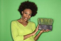Woman holding grass Stock Photos