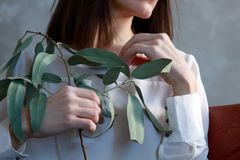Woman Holding Green Leaf Plant Stock Photography