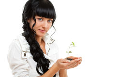 Woman holding green plant Royalty Free Stock Image