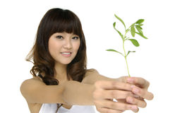 Woman holding a growing plant Royalty Free Stock Images