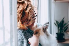 Woman Holding Guinea Pig Near Window stock photography