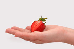 Woman holding in hands ripe fresh strawberries isolated on white. Stock Image