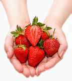 Woman holding in hands ripe fresh strawberries isolated on white Stock Images
