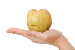Woman holding heart-shaped potato in his hand Stock Photos