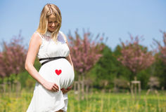 Woman holding heart sign close to her tummy Stock Photos