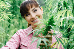 Woman holding hemp flowers Royalty Free Stock Image