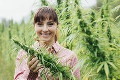 Woman holding hemp flowers Stock Photos