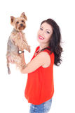 Woman holding his little dog yorkshire terrier Stock Photos