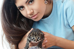 Woman holding a kitten Stock Images