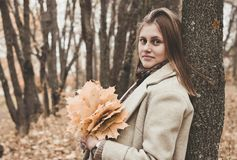 Woman Holding Leaves While Leaning Her Back on Tree stock photography