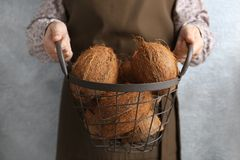 Woman holding metal basket with coconuts. On grey background Stock Images