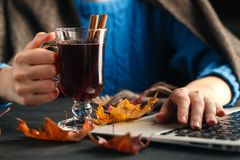 Woman holding mug of hot drink apple tea, mulled wine. Female hands with cup of seasonal hot drink. Homemade hot fruit tea. Stock Photography