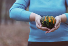 Woman holding orange and green pumpkin Stock Photography