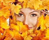 Woman holding orange leaves. Isolated stock photography
