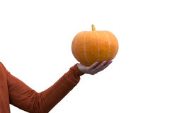 Woman holding orange pumpkin in hand on white background Stock Photography