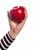 Woman holding organic red delicious apple Stock Image