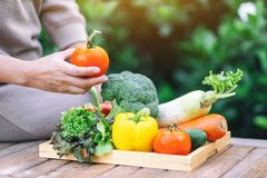 A woman holding and picking a fresh mixed vegetables from a wooden tray