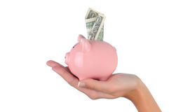 Woman holding Piggy Band with Dollar. Closeup of a woman's hand holding a pink piggy bank with a dollar bill stuck in the top slot. Horizontal format over a Stock Photos