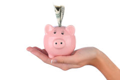 Woman holding a piggy bank in her hand Stock Images