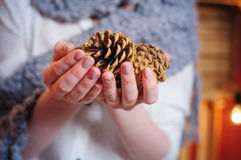 Woman holding a pine cones. In studio Stock Photos