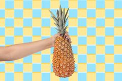 Woman holding pineapple colorful background royalty free stock photography