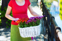 Woman holding pink bike. With basket full of flowers on the on the street of an old town in Gdansk, Poland royalty free stock photography