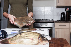 Woman holding a plaice and other fish. A young woman is in her kitchen and is holding a plaice with other types of fish in a box in front of her Stock Images