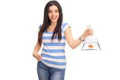 Woman holding a plastic bag with a goldfish in it Royalty Free Stock Photography