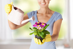 Woman holding pot with flower Stock Photo