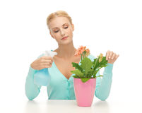 Woman holding pot with flower and spray bottle Royalty Free Stock Photography