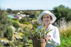 Woman  holding a pot with plant. Woman in white holding a pot with plant outdoors Royalty Free Stock Images