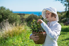 Woman  holding a pot with plant. Woman in white holding a pot with plant outdoors Stock Photography