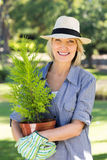 Woman holding potted plant for gardening Stock Image