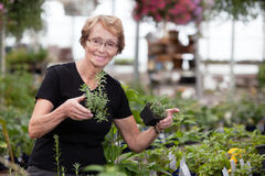 Woman holding potted plants Royalty Free Stock Photo