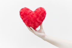 Woman holding and protecting a red heart shape on white background close-up Royalty Free Stock Image