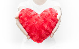 Woman holding and protecting a red heart shape on white background close-up Stock Photography