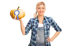 Woman holding a pumpkin with award. Young woman holding a pumpkin with a blue award ribbon on it isolated on white background Royalty Free Stock Photos