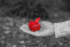 Woman holding a red gift box Royalty Free Stock Photo