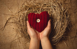 Woman holding red knitted heart at nest against linen background Royalty Free Stock Photo