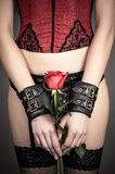 Woman holding a red rose Royalty Free Stock Photography