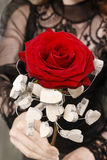 Woman holding red rose decorated with wooden hearts Royalty Free Stock Images