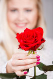 Woman holding red rose in hand Stock Photography