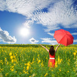 Woman holding red umbrella in Yellow flower field and sun sky Stock Image