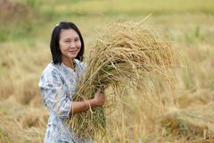 Woman holding rice Royalty Free Stock Photos
