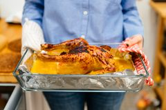 Woman holding a roast chicken directly from oven Stock Photos