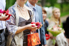 Woman holding rose petals Royalty Free Stock Image