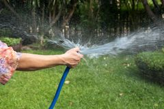 Woman holding rubber water hose watering garden. On summer stock photography