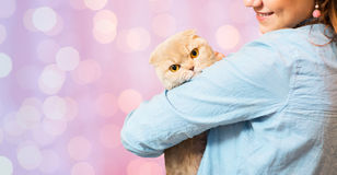 Woman holding scottish fold cat over pink lights Stock Image