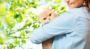 Woman holding scottish fold cat over tree Royalty Free Stock Photos
