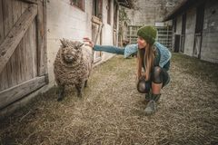 Woman Holding Sheep Beside Wall Stock Photography